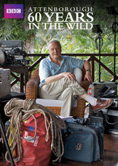 Attenborough: 60 Years in the Wild Netflix KR (South Korea)