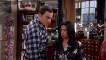 The Big Bang Theory: Season 4: The Agreement Dissection