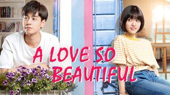 A Love So Beautiful (2017)