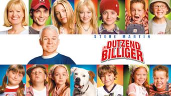 Im Dutzend billiger (2003)