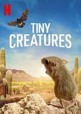 Search netflix Tiny Creatures