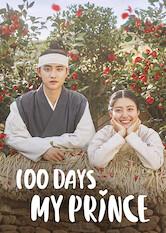 Search netflix 100 Days My Prince