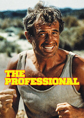 Search netflix The Professional